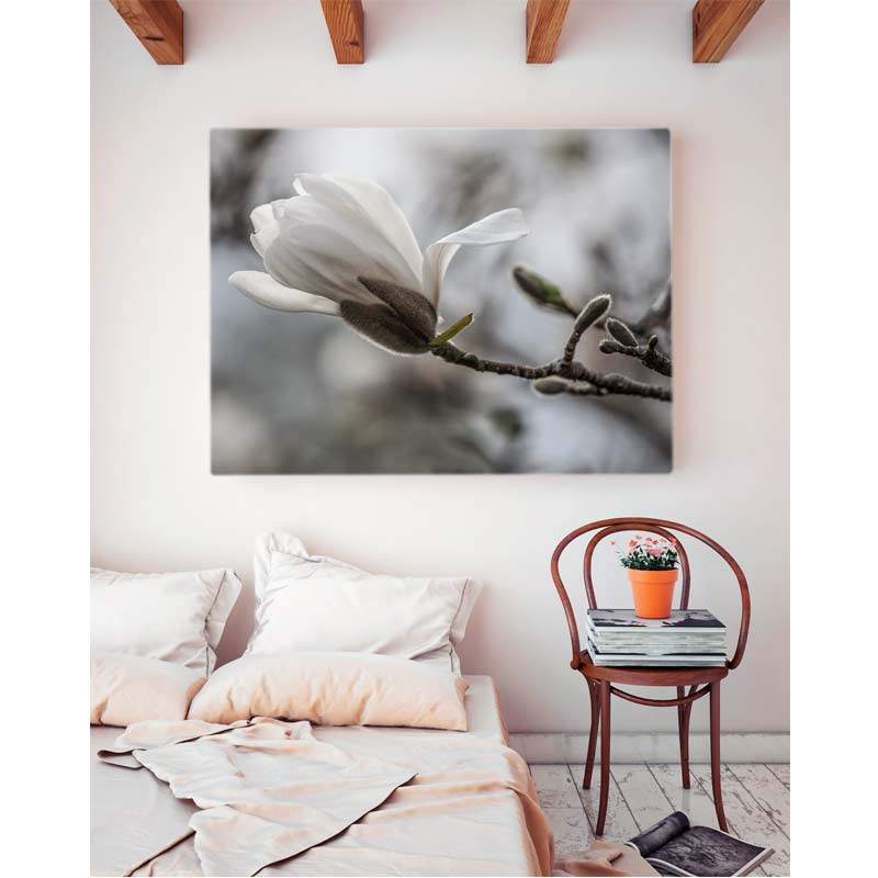 interior bedroom with canvas print of white magnolia