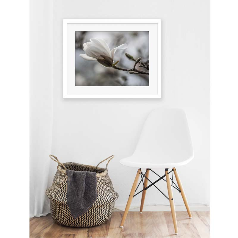 interior with basket, white chair and framed picture of white magnolia