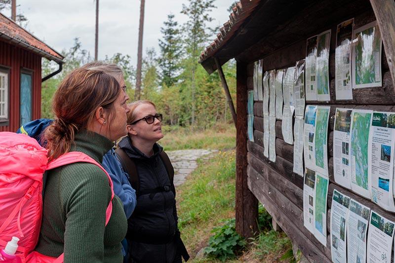 tre tjejer tittar på infotavla i tivedstorp