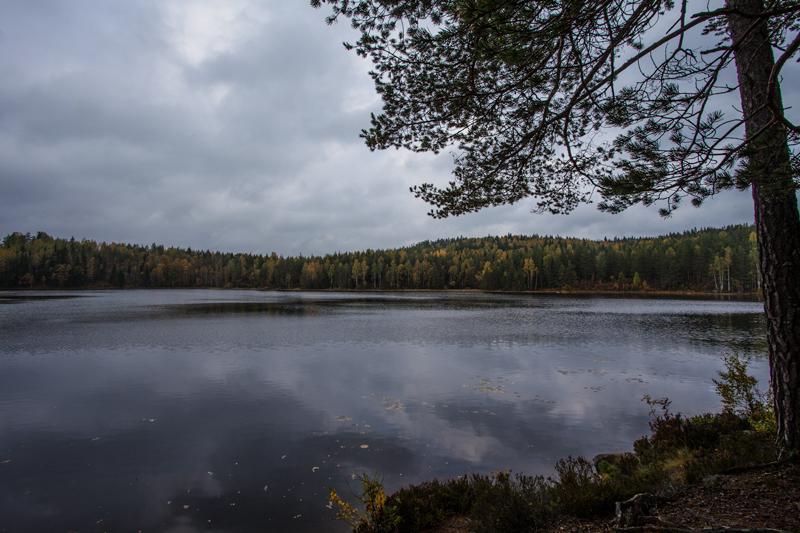 Bergslagsleden Etapp 9, Stora Dammsjön