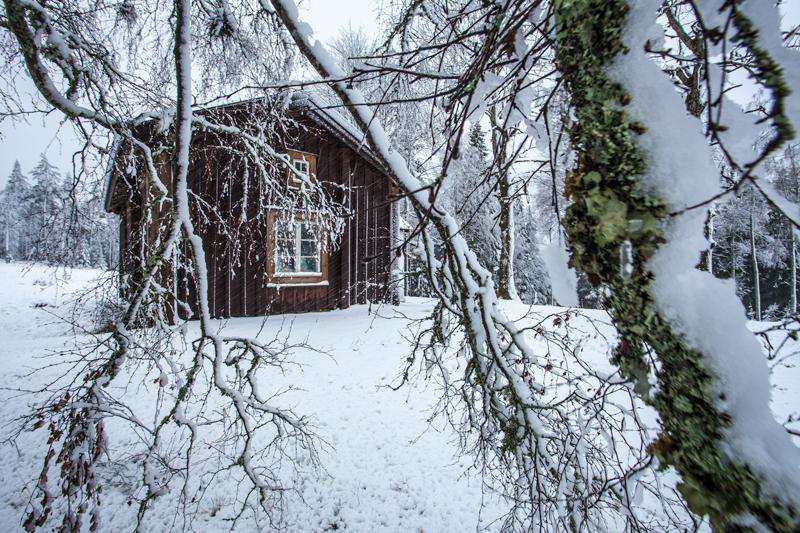 Stuga i Gårdstorp, massor med snö